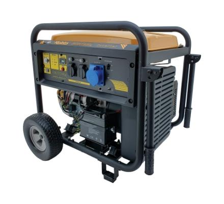 Robin Inverter Generator RGN7800I